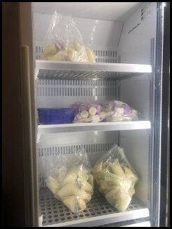 breastmilk fridge